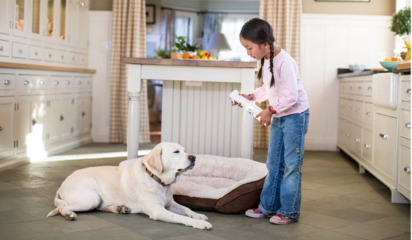 Force of Nature is a natural deodorizer for pet bedding